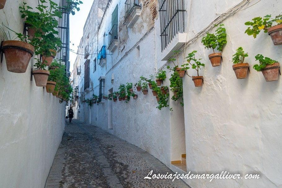 callejuela blanca con macetas típica de los pueblos blancos de Cádiz, en Arcos de la frontera - Los viajes de Margalliver