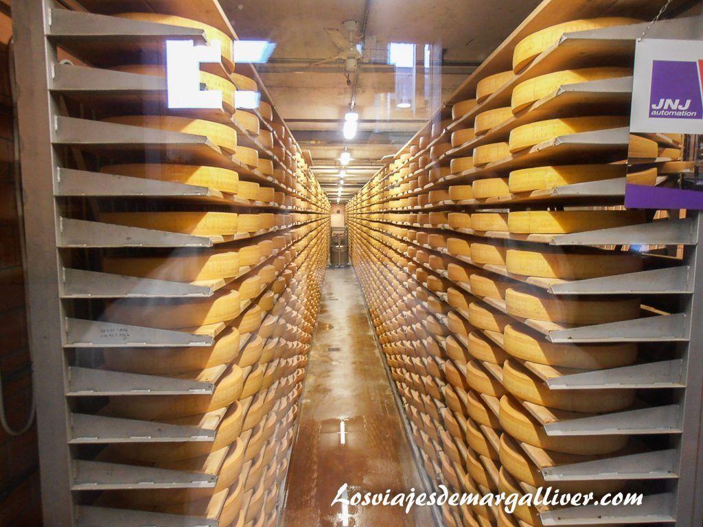 Sala de curación de la fábrica de quesos Gruyeres- Los viajes de Margalliver