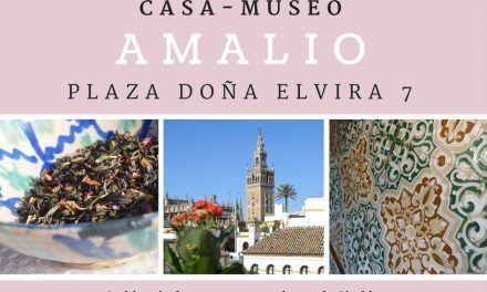 Una cita con la Giralda, la casa-museo Amalio
