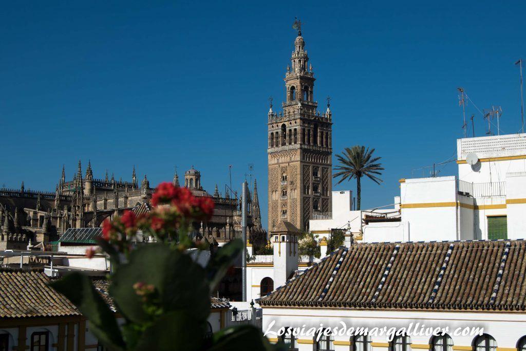 vistas de la giralda desde la casa-museo Amalio, viajes románticos por Europa - Los viajes de Margalliver
