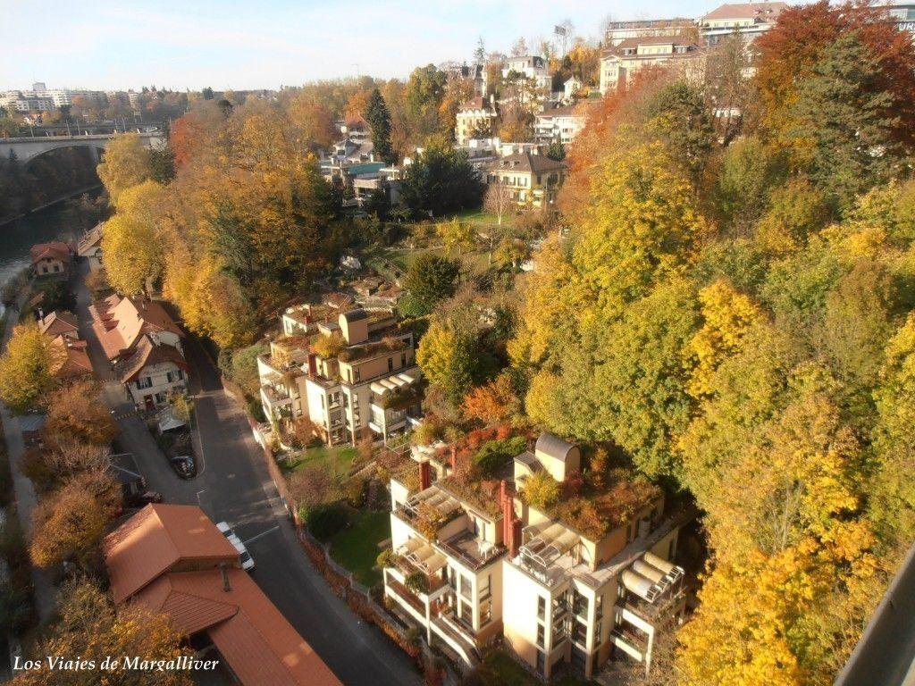 Vistas desde el puente de Berna - Los viajes de Margalliver