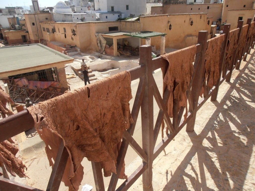 Pieles secando en la teneria de Tetuán, que hacer en Tetuán - Los viajes de Margalliver