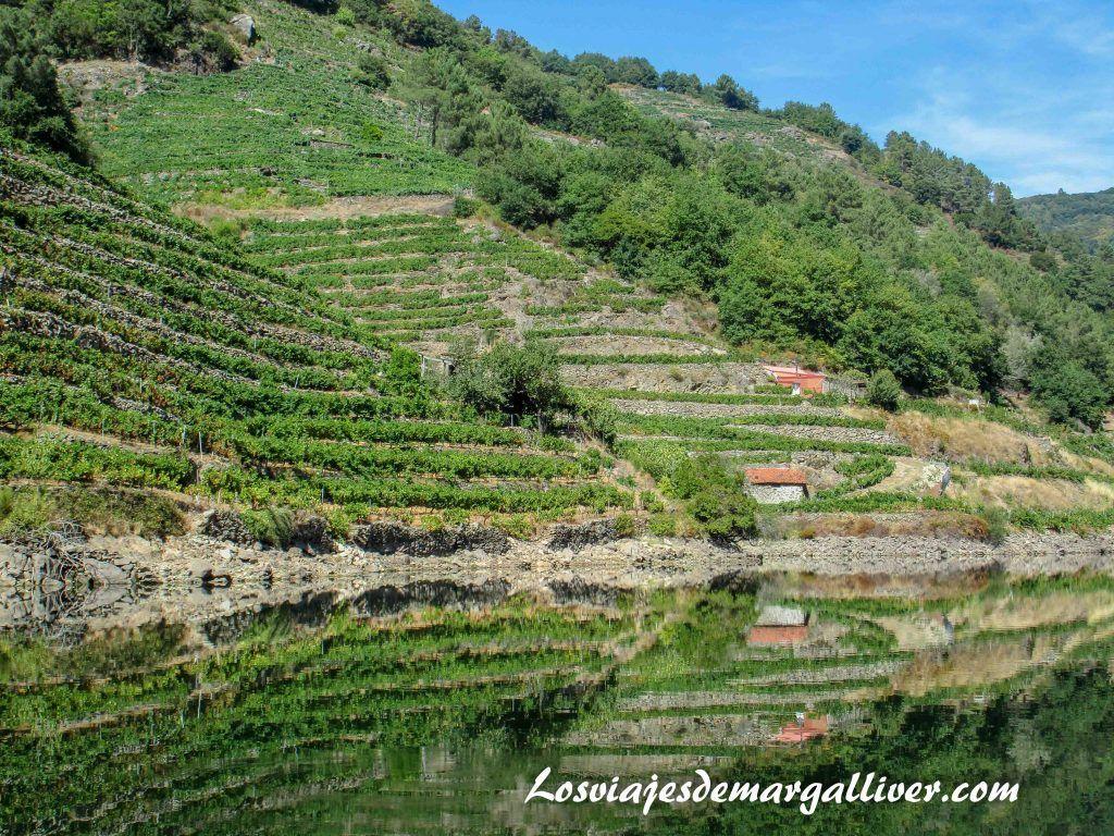 Ejemplo de viticultura heroica en la Ribeira Sacra - Los viajes de Margalliver