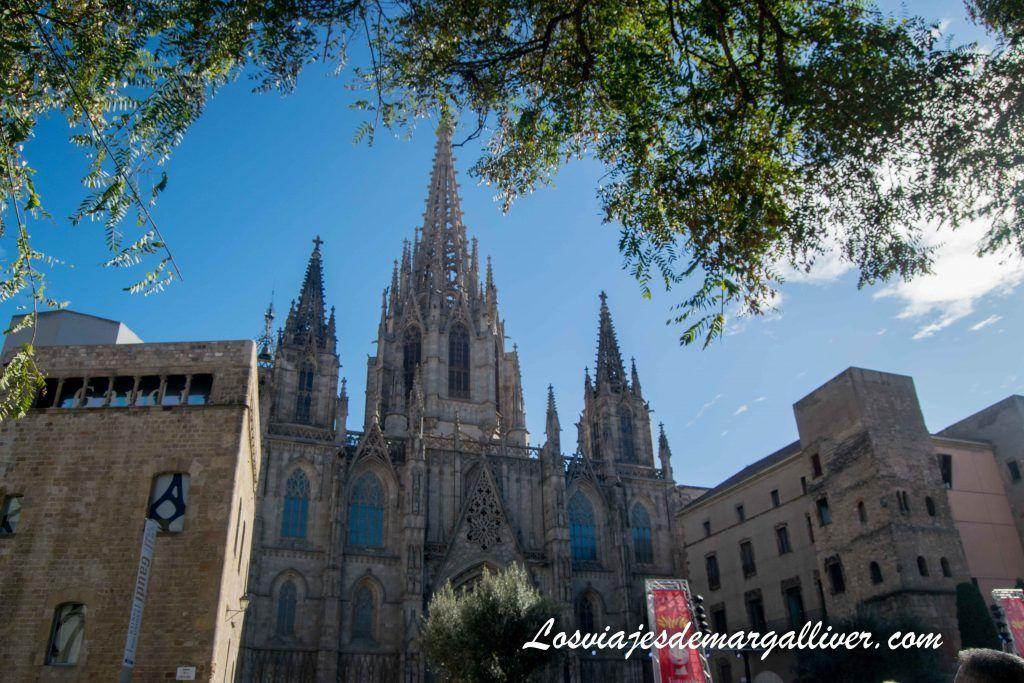La catedral de Barcelona, que ver y hacer en 3 días - Los viajes de Margalliver