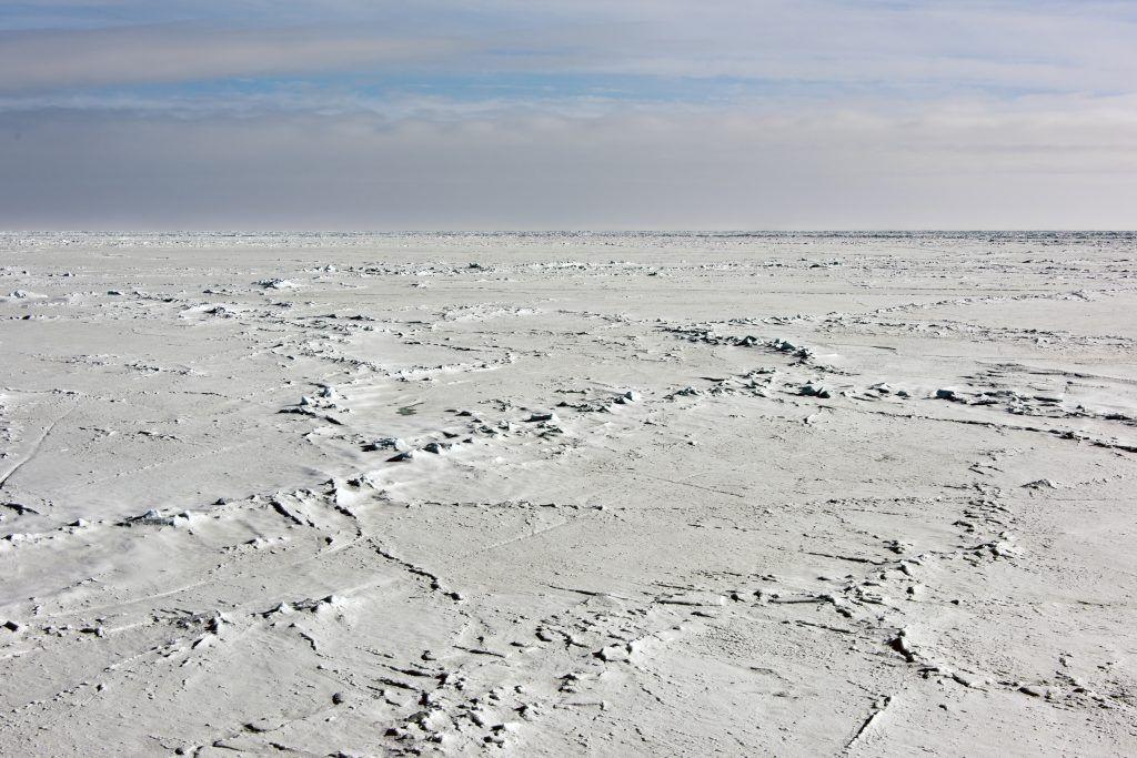 Polo Sur - Los viajes de Margalliver