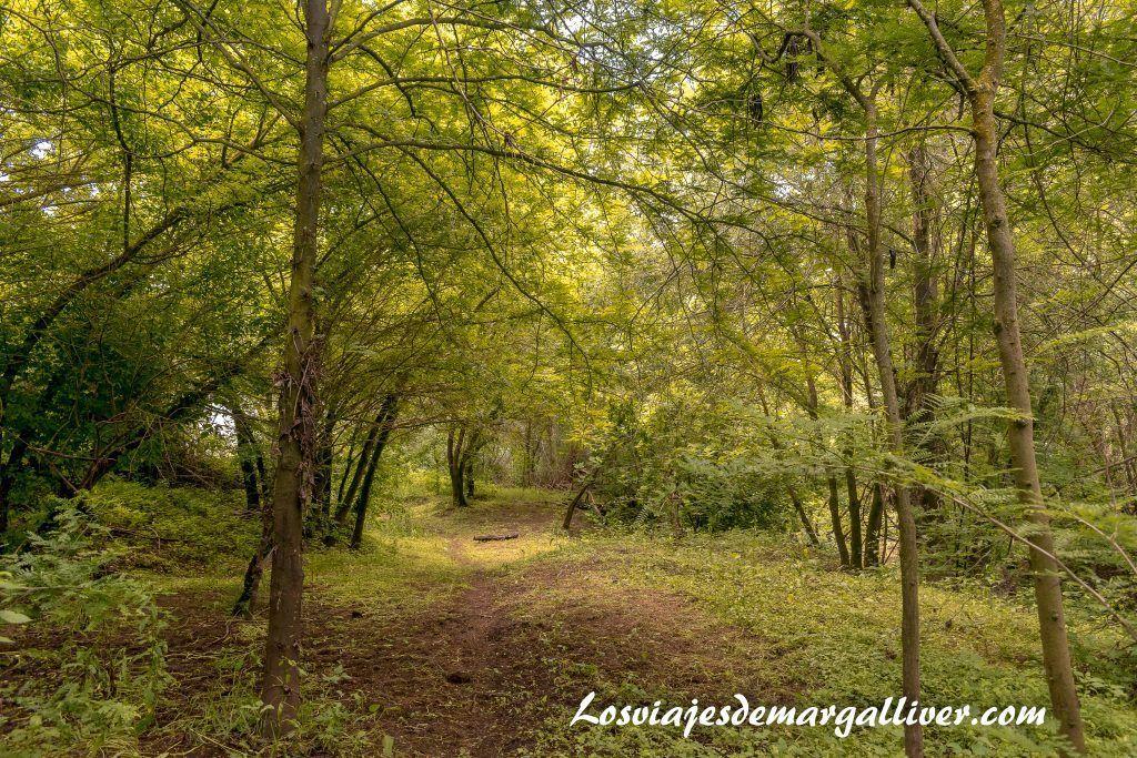 Corredor verde del guadiamar, ruta por ell rocío en Sevilla - Los viajes de Margalliver