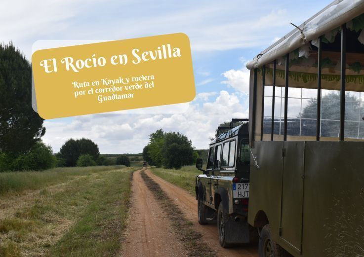 El Rocío en Sevilla , ruta en Kayak por el guadiamar - Los viajes de Margalliver