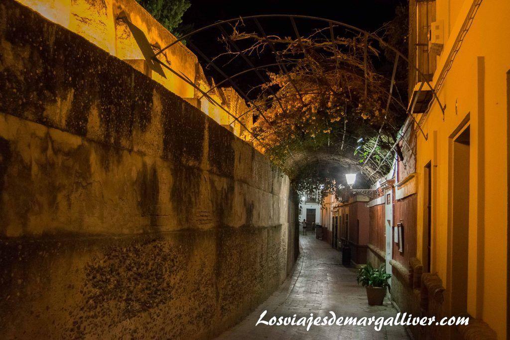 Calle Agua, justo al lado del hospital de los venerables sacerdotes en Sevilla - Los viajes de Margalliver