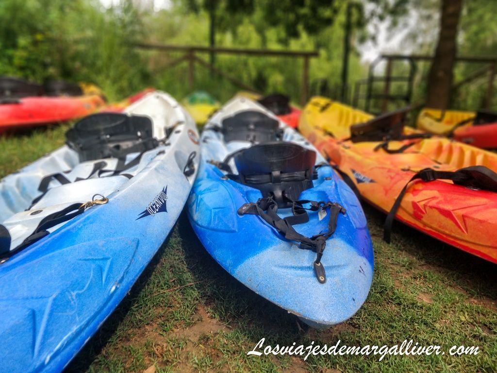 ruta en kayak por el guadiamar , el rocio en Sevilla - Los viajes de Margalliver