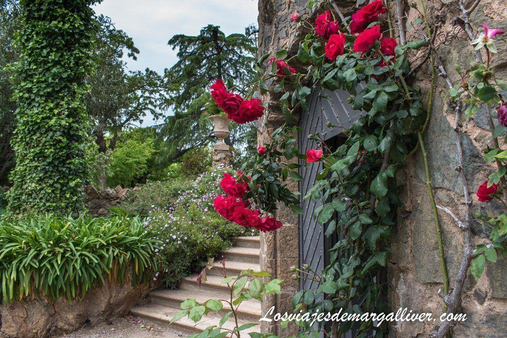 Rosaleda en la Torre bellesguard de Gaudí - Los viajes de Margalliver