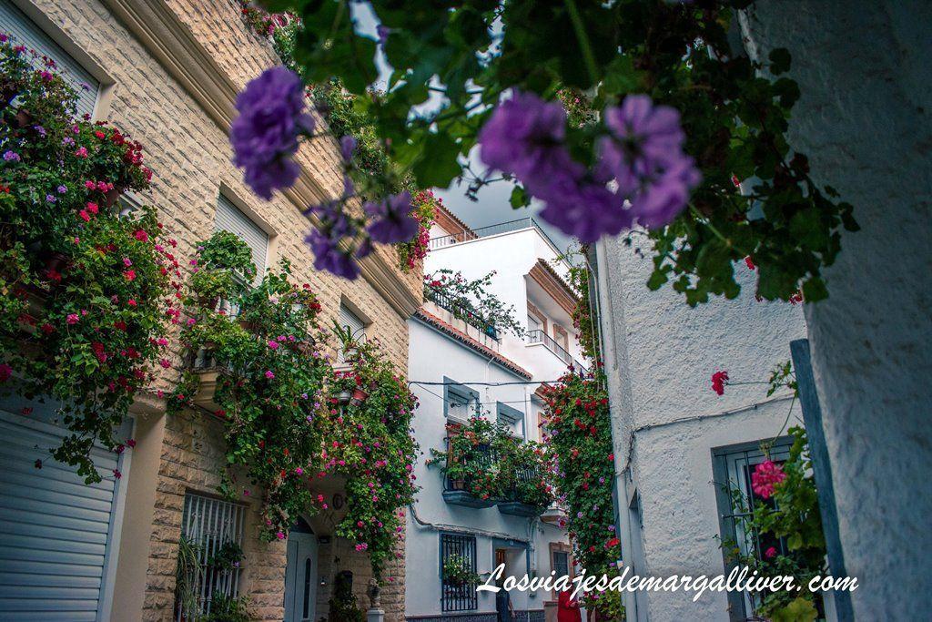 Preciosos balcones floridos en Alcolea, ruta por Almería - Los viajes de Margalliver