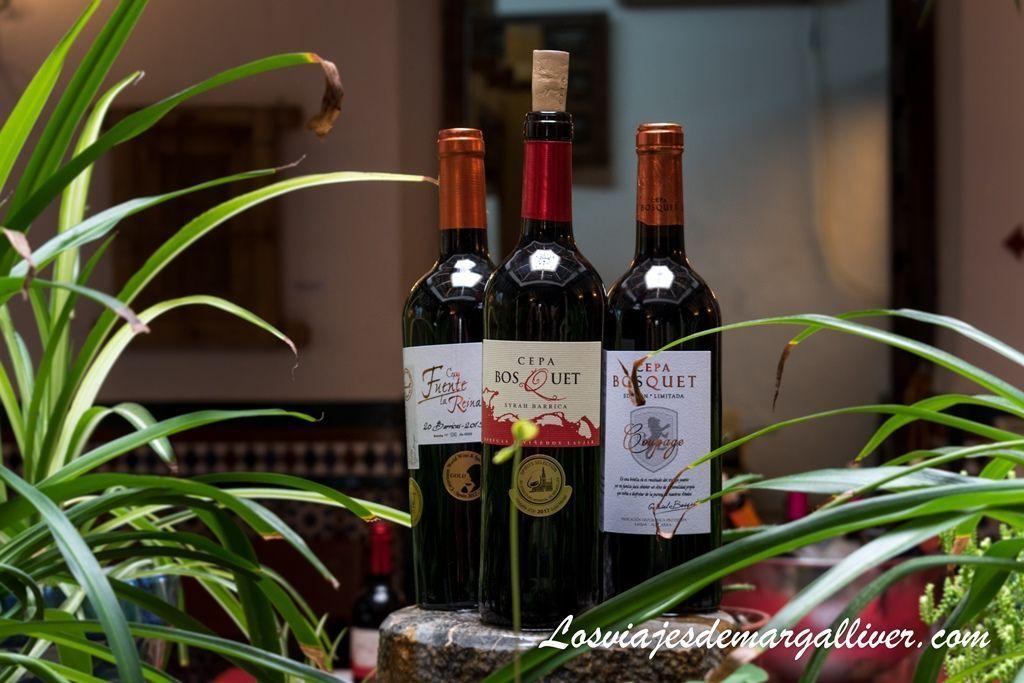 vinos bosquet que degustamos en fondón, ruta por Almería - Los viajes de Margalliver