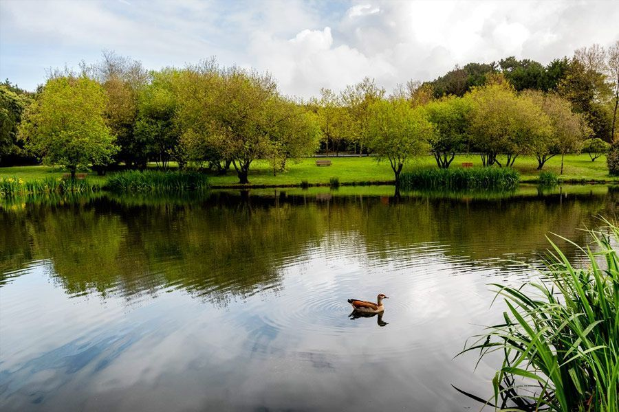 visitar el parque da Cidade do Porto - los viajes de Margalliver