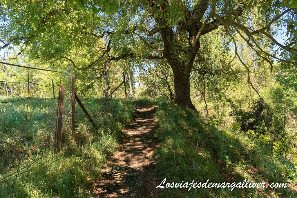 camino para acceder a las cascadas del Huéznar - los viajes de Margalliver