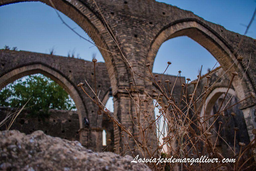 Lamentable estado de conservación de la Ermita de Talhara en Benacazón - Los Viajes de Margalliver