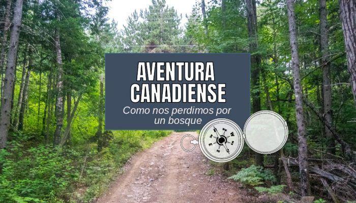 Nuestra aventura en Canadá: Como nos perdimos por un bosque