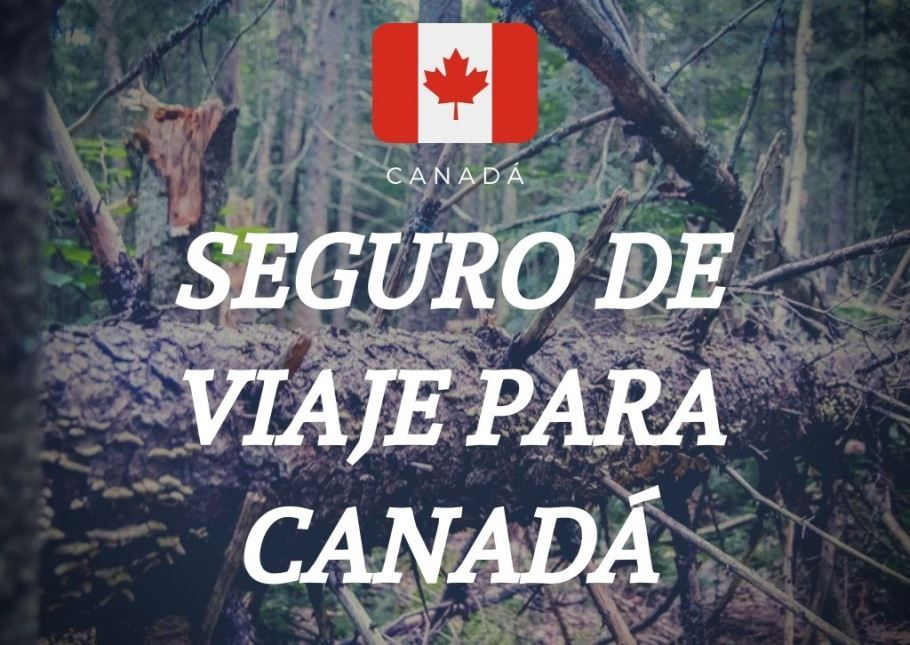 seguro de viaje para canadá - Los viajes de Margalliver