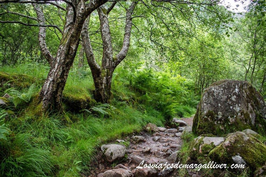 Ruta de senderismo en Steall Waterfalls en Escocia - Los viajes de Margalliver