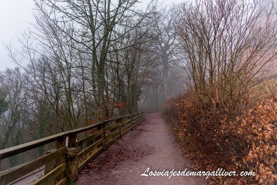 camino de entrada al castillo de Haut-Koenigsbourg - Los viajes de Margalliver