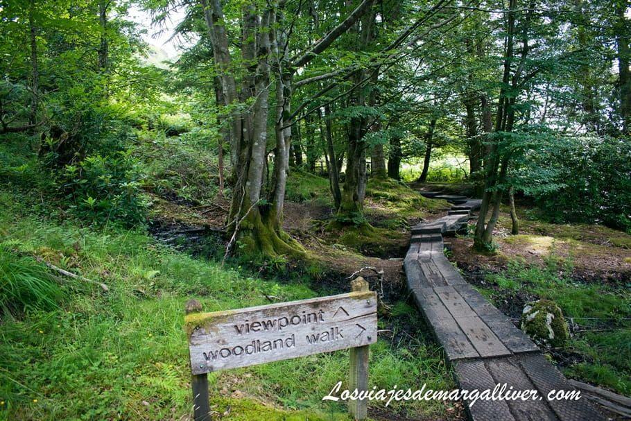 Camino largo al viaducto de Glenfinnan en Escocia - Los viajes de Margalliver