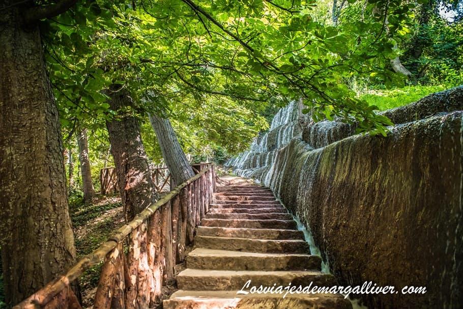 Fresnos Bajos en Monasterio de Piedra - Los viajes de Margalliver