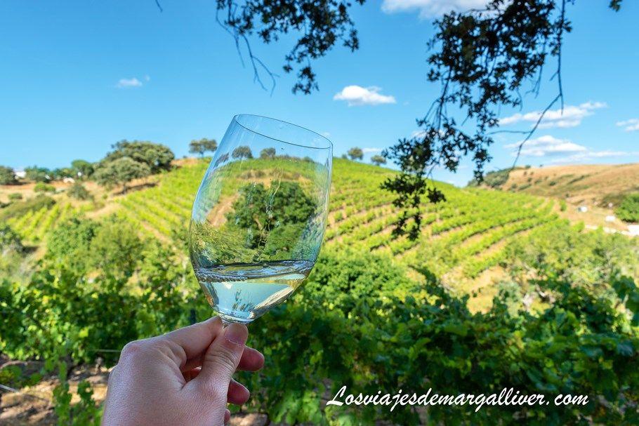 Cata de vinos en los viñedos de Colonias de Galeón en Cazalla de la Sierra - Los viajes de Margalliver