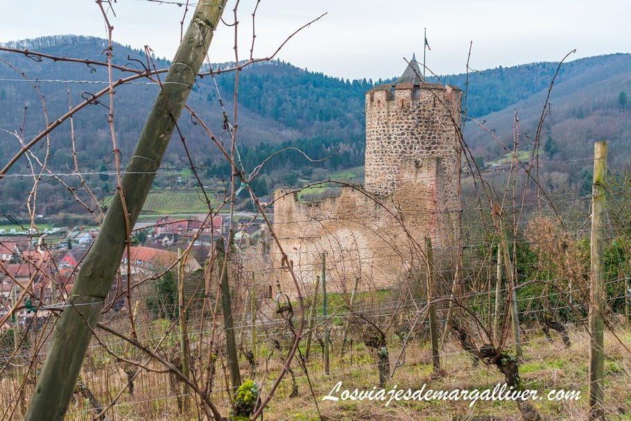 Castillo de Kaysersberg junto a sus viñedos en Alsacia - Los viajes de Margalliver