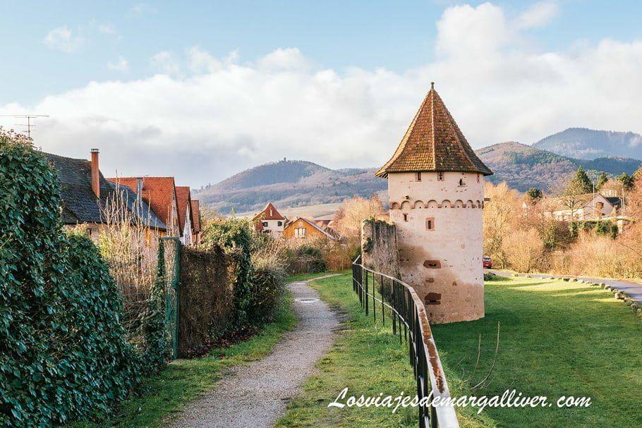 Una de las torres de la muralla medieval de Bergheim en Alsacia - Los viajes de Margalliver