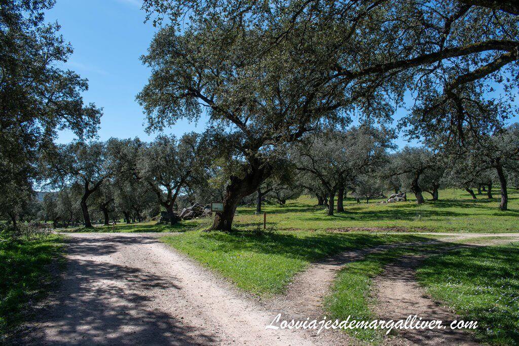 Rivera del Cala y Ruta del Batrocal, qué ver en El Real de la Jara - Los viajes de Margalliver