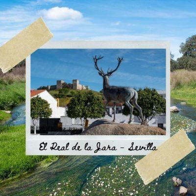 El Real de la Jara y su ruta de senderismo «La rivera del Cala»