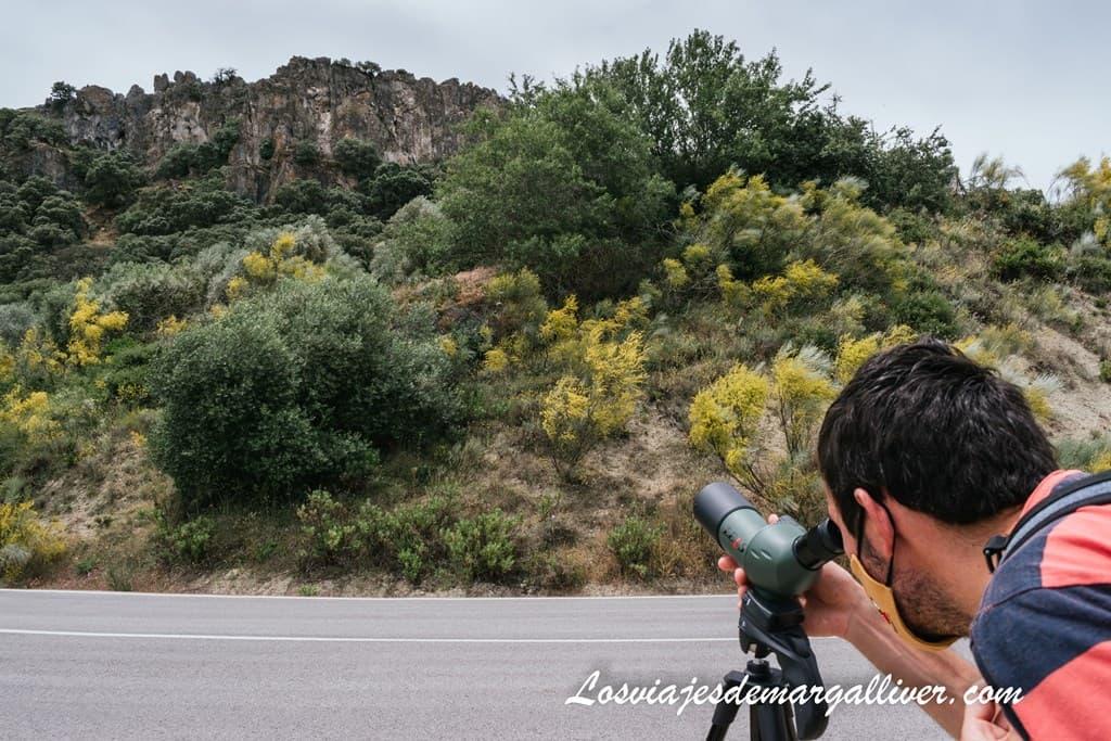Kike observando buitres desde el Mirador Puerta de la Ventana en Pruna - Los viajes de Margalliver