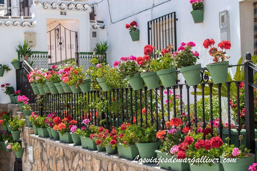 Macetas en el patio de la Torre en Iznájar - Los viajes de Margalliver